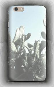Kaktus cover