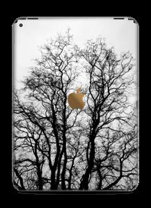 November treet Skin IPad Pro 12.9