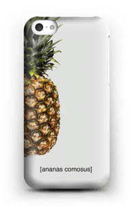 [ananas comosus]  case IPhone 5c