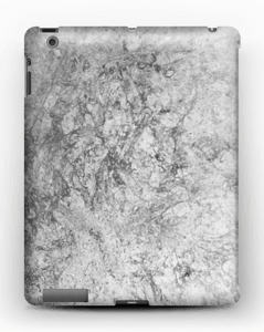 stone case case