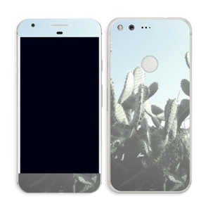 Cactus Skin Pixel
