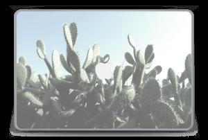 """Cactus Skin MacBook Pro 15"""" -2015"""