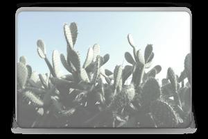 Cactus Skin Laptop 15.6