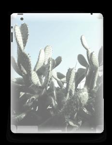 Cactus Skin IPad 4/3/2