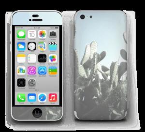 Cactus Skin IPhone 5c