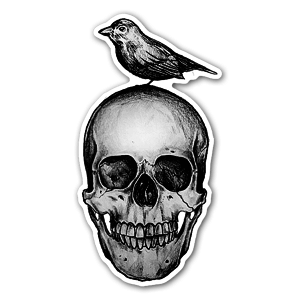 Skull met vogel sticker