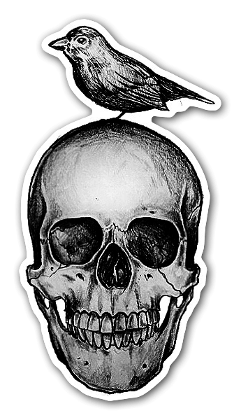 Skull and bird sticker
