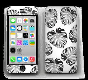Estampado de hojas  Vinilos  IPhone 5c