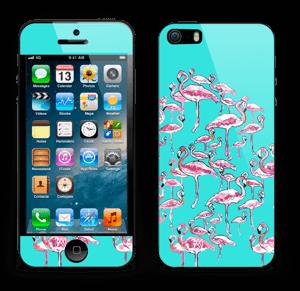 Flamingo tarrakuori