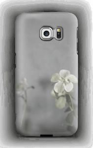 Flowery blues deksel Galaxy S6 Edge
