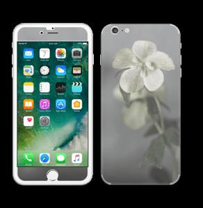 Flowery Blues Skin IPhone 6 Plus