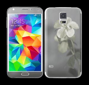 Flowery Blues Skin Galaxy S5