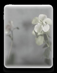 Flowery Blues Skin IPad 1