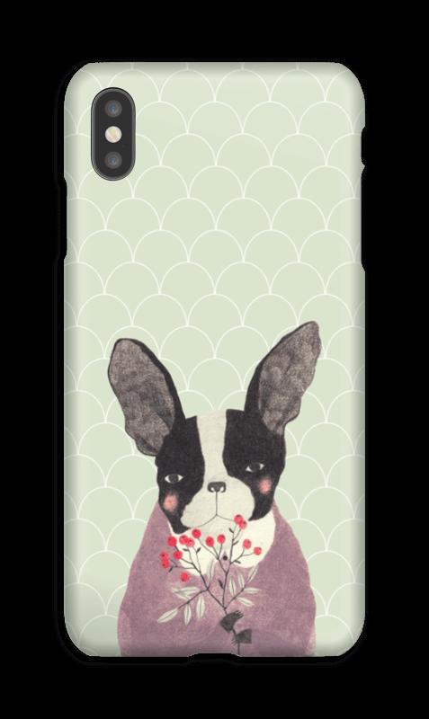Fransk bulldog skal IPhone XS Max