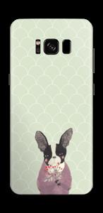 Französische Bulldogge Skin Galaxy S8