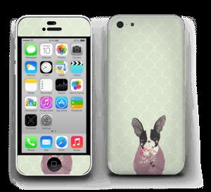 Un bulldog francais Skin IPhone 5c