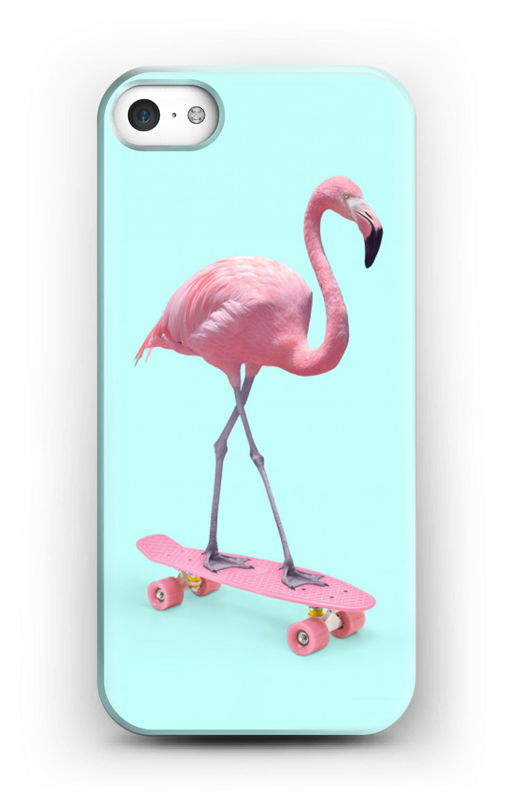 coque iphone 5 skate