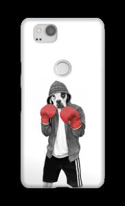 Street boxer skal Pixel 2