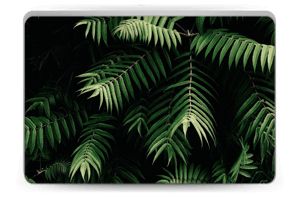 Tropics skin Laptop 15.6