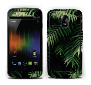 Tropical Skin Nexus