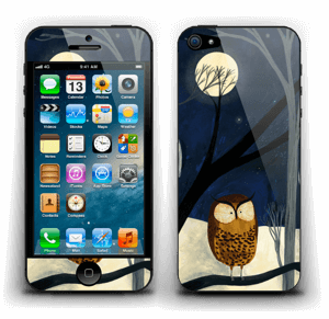 Midnight Skin IPhone 5