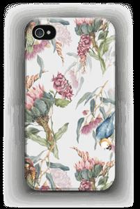 Paratiisilinnut ja valkoinen tausta kuoret IPhone 4/4s