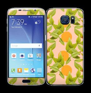 Cítricos Vinilo  Galaxy S6