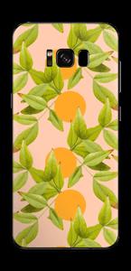 Citronnier Skin Galaxy S8 Plus