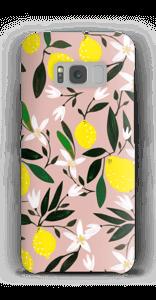 Sitruunat kuoret Galaxy S8