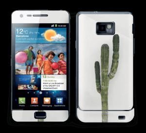 Mexican Cactus Skin Galaxy S2