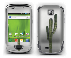 Mexican Cactus Skin Galaxy Mini