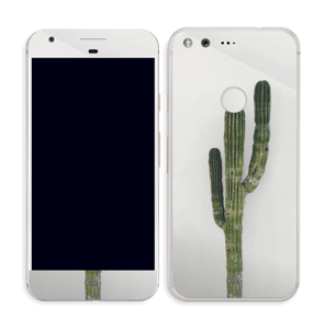 Mexican Cactus Skin Pixel