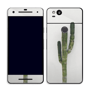 Mexican Cactus Skin Pixel 2