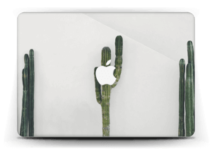"Mexican Cactus Skin MacBook Air 13"""