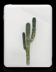 Mexican Cactus Skin IPad 1