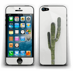 Mexican Cactus Skin IPhone 5