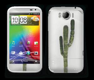 Mexican Cactus Skin Sensation XL