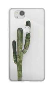 The Single Cactus case Pixel 2