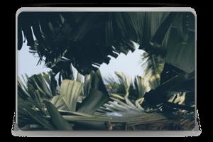 Tropical Leaves Skin Laptop 15.6