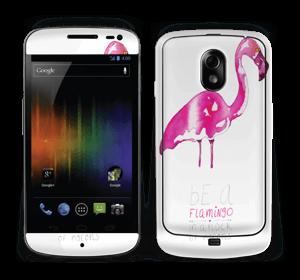 Be a flamingo Skin Nexus