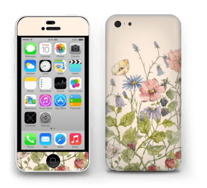 Blomstereng Skin IPhone 5c