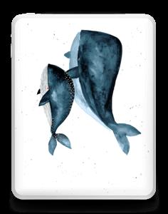 Dos ballenas en azul Vinilo  IPad 1