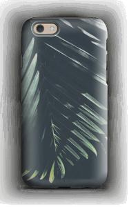 palm tree sunshine