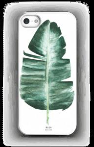 Musa Basjoo hoesje IPhone 5/5S