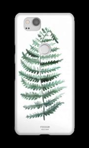 Pteridium Aquilinum cover Pixel 2