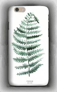 Pteridium Aquilinum case
