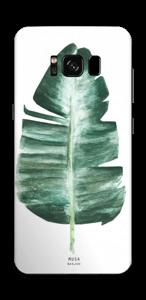 Musa Basjoo  Skin Galaxy S8