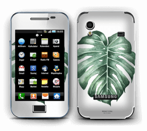Monstera Deliciosa Skin Galaxy Ace
