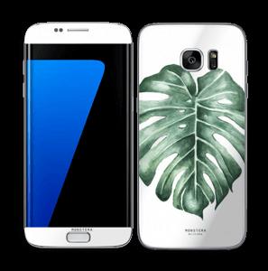 Monstera Deliciosa Skin Galaxy S7 Edge