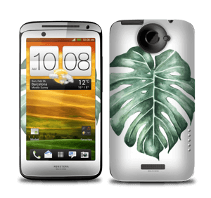Monstera Deliciosa Skin One X